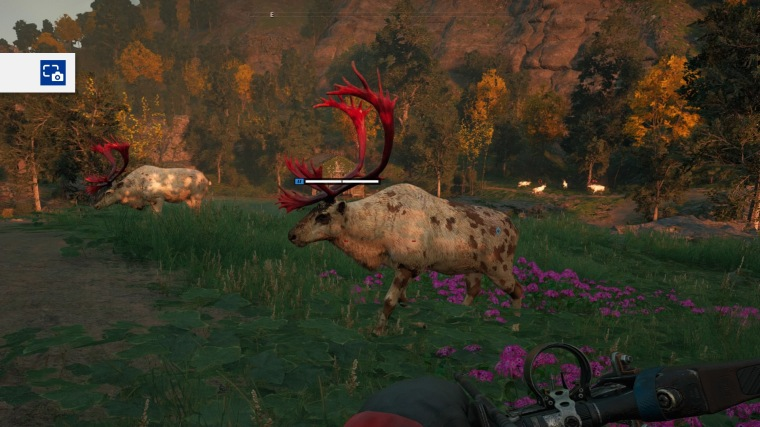 Far Cry® New Dawn_20190219163258